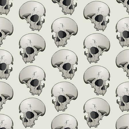 Skull seanless background