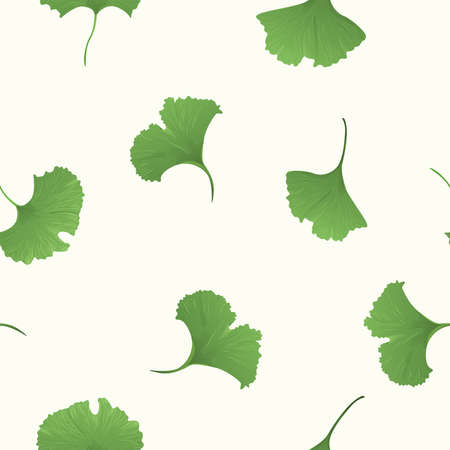 Gingko biloba seamless background Vector