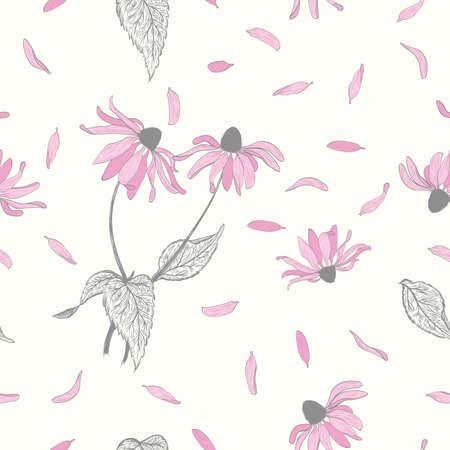 Echinacea seamless background Illustration