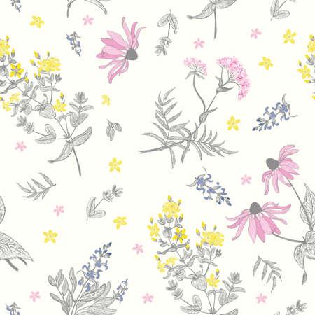 valerian: Herbs seamless background