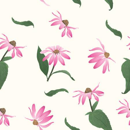 Echinacea purpurea seamless background Illustration
