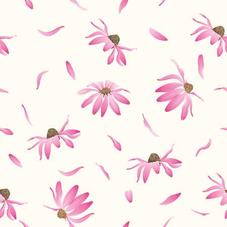 Echinacea purpurea flowers seamless background