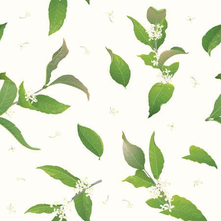 fragrant: Osmanthus seamless background