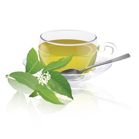 chinese tea: Osmanthus tea cup Illustration