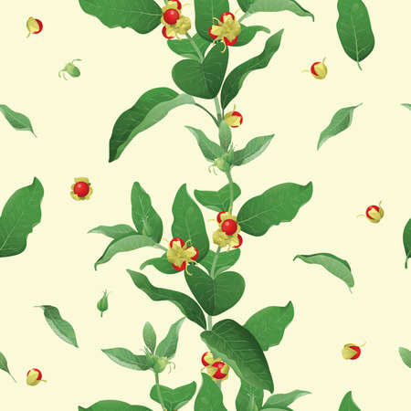 Seamless background with Withania somnifera commonly  known as Ashwagandha