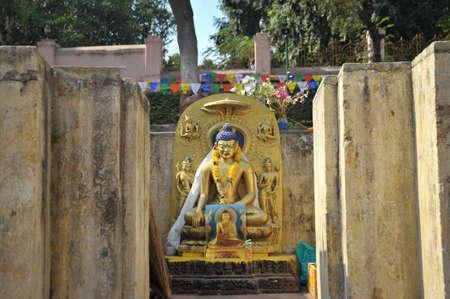 banian: buddha at india Stock Photo