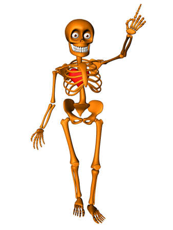 cartoon body: Cute human body skeleton with red heart Stock Photo