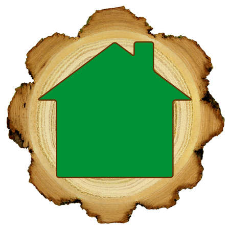 Ecological wooden house concept - growth rings Stock Photo - 13933441