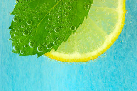 Lemon slice, mint leaf and soda  water with bubbles