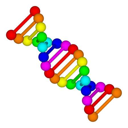 3D-Darstellung der Desoxyribonukleinsäure DNA Lizenzfreie Bilder