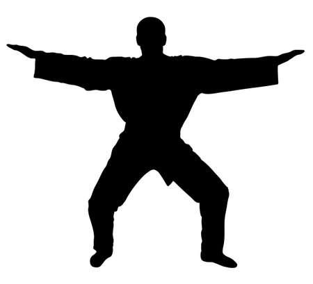 master: Master samurai  - silhouette