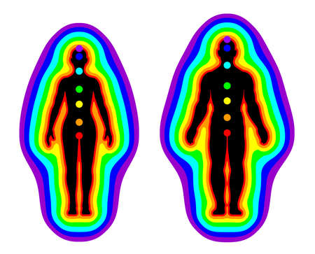 esoteric: Illustration of human aura and chakras on white background