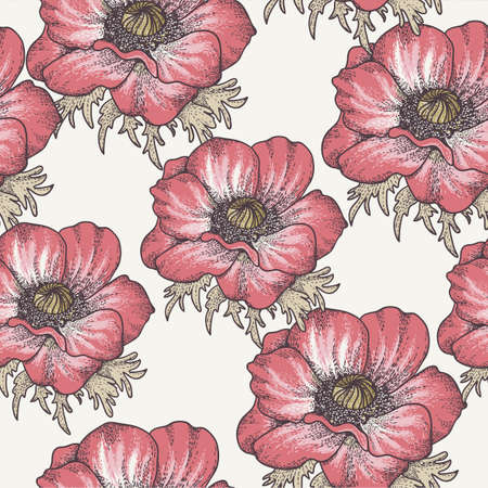 poppy pattern: Floral background with poppies Illustration