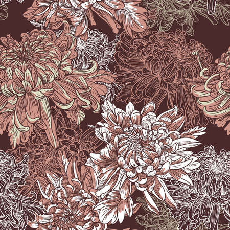 Chrysanthemum: Floral background with blooming chrysanthemums Illustration