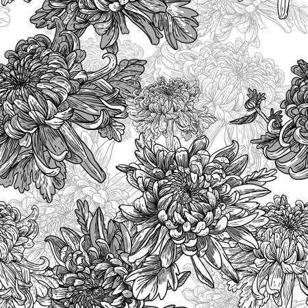 Floral lack and white background with chrysanthemums