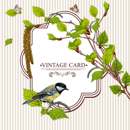 tit: Vintage background with birch branches and bird tit. Vector illustration