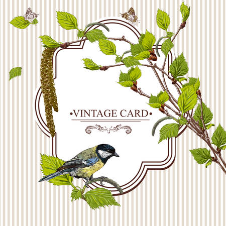 tit: Vector Design element. Nature Background Vintage Card with Birch Twigs and Bird Tit