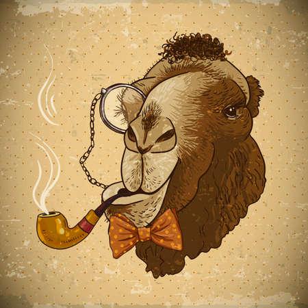 소식통 동물 빈티지 카드. 파이프와 단안경, 벡터 일러스트와 함께 낙타