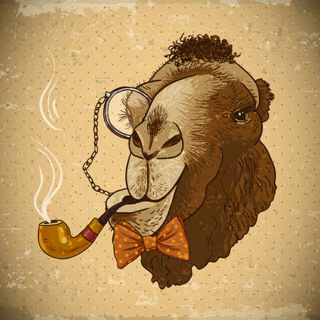 Vintage Card with Hipster Animal. Camel with a pipe and a monocle, vector illustration Illustration