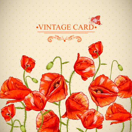 remembrance day: Bunch of Beautiful Red Poppy vector illustration Vintage Invitation Floral Card Design with Poppy.