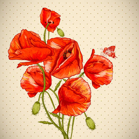 poppies: Bunch of Beautiful Red Poppy vector illustration Vintage Invitation Floral Card Design with Poppy.