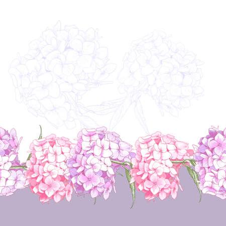 Beautiful Pink Hydrangea Vintage Seamless Floral Border Botanical Vector Illustration Vector
