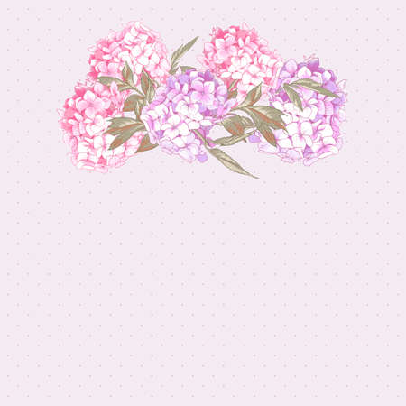 vintage background pattern: Vintage Greeting Card with Hydrangea and Peonies Illustration