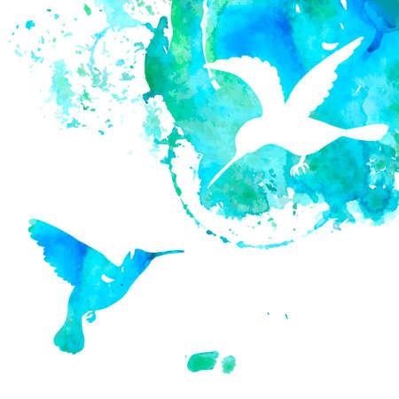 Contexte des animaux avec des colibris