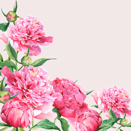 pink: Pink watercolor peonies vintage greeting card Stock Photo