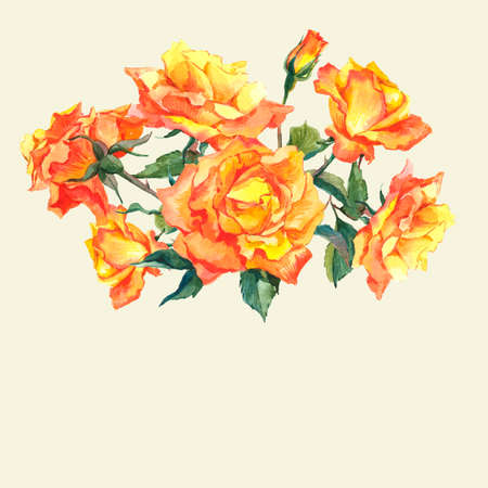 yellow roses: Watercolor Card with Yellow Garden Roses