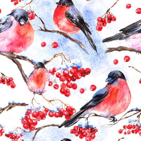 Watercolor seamless background with bullfinches photo