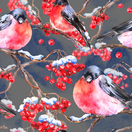 bullfinch: Watercolor seamless background with bullfinches Stock Photo