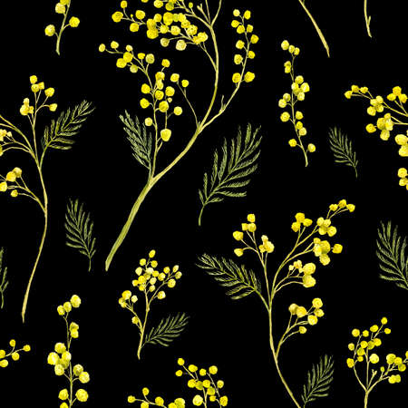 mimosa: Seamless Pattern with Watercolor Sprig of Mimosa