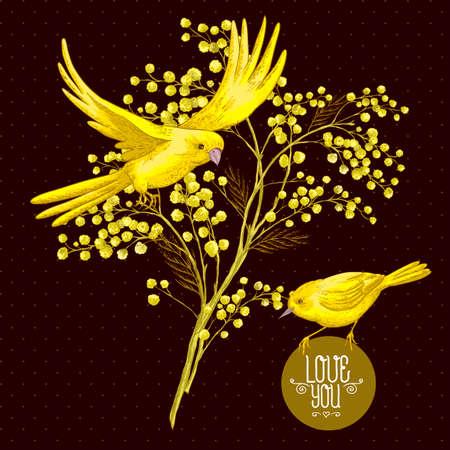 a sprig: Ramita de Mimosa y p�jaro amarillo, fondo de primavera Vectores