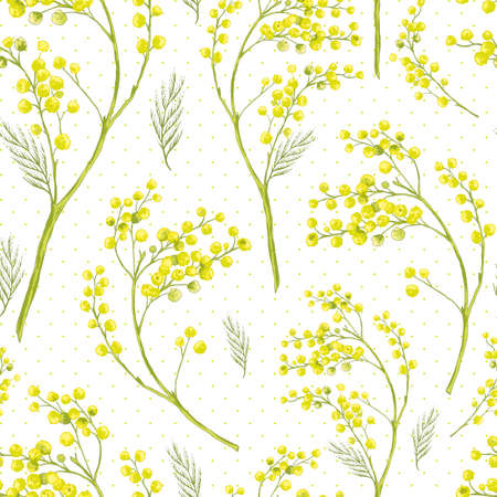 mimosa: Seamless Spring Pattern with Sprig of Mimosa. Illustration