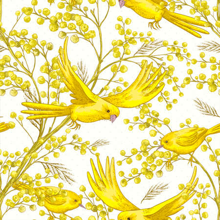 mimosa: Seamless Pattern with Sprig of Mimosa