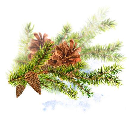 christmas watercolor: Christmas Watercolor with Sprig of Fir Trees Stock Photo