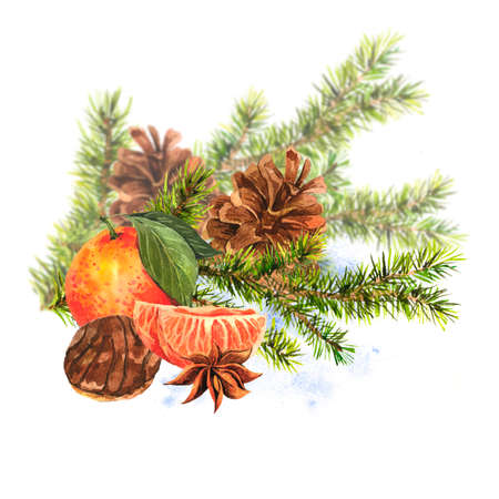 christmas watercolor: Christmas Watercolor Card with Sprig of Fir Trees Stock Photo