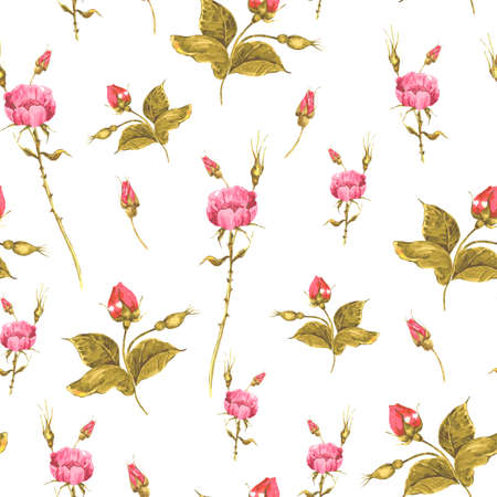 Vintage scheda floreale con rose e fiori selvatici