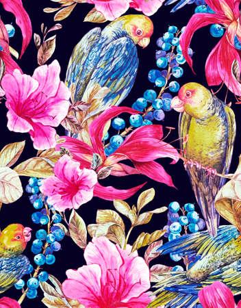 loros verdes: Acuarela Ex�tica fondo transparente con bayas azules, flores rosadas tropicales y loros verdes, acuarela Ilustraci�n