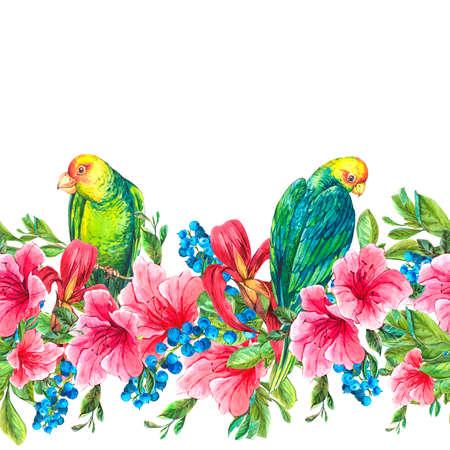 loros verdes: Ex�tico incons�til floral de la acuarela Frontera con bayas azules, flores rosadas tropicales y loros verdes, Ilustraci�n de la acuarela