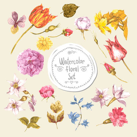 tulipan: Zestaw akwarela kwiatowy wzór Elements.Peonies, Roses, narcyz, tulipan, kwiaty w stylu vintage