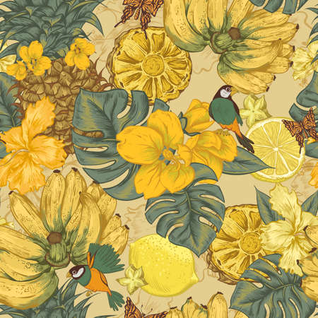 birds of paradise: Vintage Seamless Background, Tropical Fruit, Flowers, Butterfly and Birds, Vector Illustration. Pineapple and Lemon Banana and Hibiscus Illustration