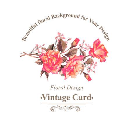 rosas rojas: Tarjeta de felicitación de la vendimia de la acuarela con Blooming Rosas rojas, ilustración vectorial