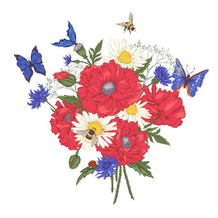 Summer Vintage Floral Bouquet. Greeting Card with Blooming Red Poppies Chamomile Ladybird Daisies Cornflowers Bumblebee Bee and Blue Butterflies. Vector Illustration on White Background