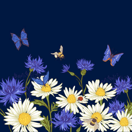 flowers bouquet: Summer Vintage Greeting Card with Blooming Chamomile Daisies Ladybird Cornflowers Bumblebee Bee and Blue Butterflies. Vector Illustration Illustration