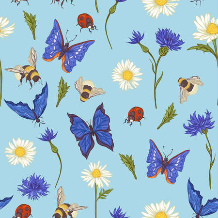bumblebee: Summer Vintage Seamless Pattern with Blooming Chamomile Daisies Ladybird Cornflowers Bumblebee Bee and Blue Butterflies. Vector Illustration