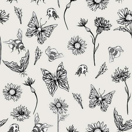 marguerite: Motif floral Été Monochrome Vintage transparente avec Blooming Chamomiles Bleuets, Ladybird Bumblebee et papillons. Vector Illustration Shabby
