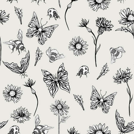bumblebee: Summer Monochrome Vintage Floral Seamless Pattern with Blooming Chamomiles Cornflowers, Ladybird Bumblebee and Butterflies. Vector Shabby Illustration