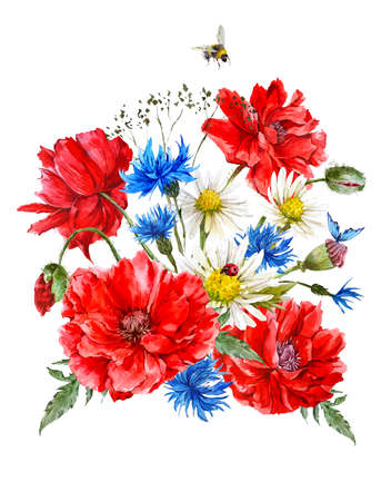 blue daisy: Summer Vintage Watercolor Greeting Card with Blooming Red Poppies Chamomile Ladybird and Daisies Cornflowers Bumblebee Bee and Blue Butterflies, Watercolor illustration.